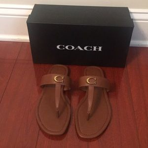 NIB Coach Jessie Leather Thong Sandal in Saddle